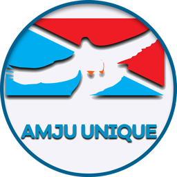 Amju Unique MFB Logo